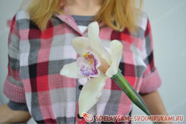 Необычный светящийся в темноте цветок