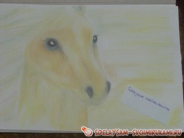 Рисуем портрет соловой лошади
