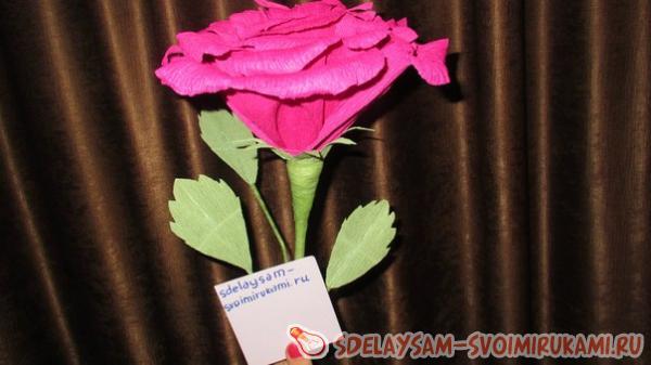 Наша роза готова