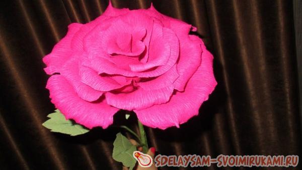 Розы своими руками из гофрированной бумаги мастер класс