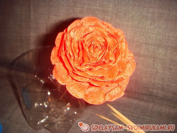 Пышные розы из гофрированной бумаги