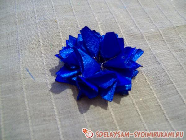 Getting started with cornflowers