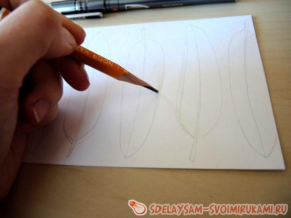 рисуем перья