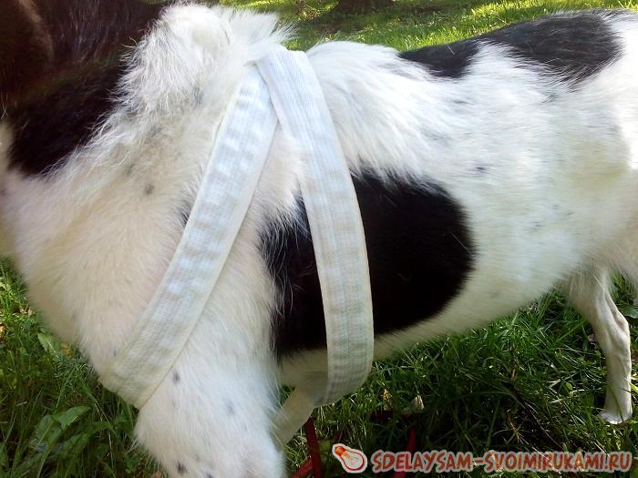 Мягкая шлейка для собаки