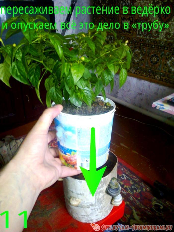 Tableware for indoor plants