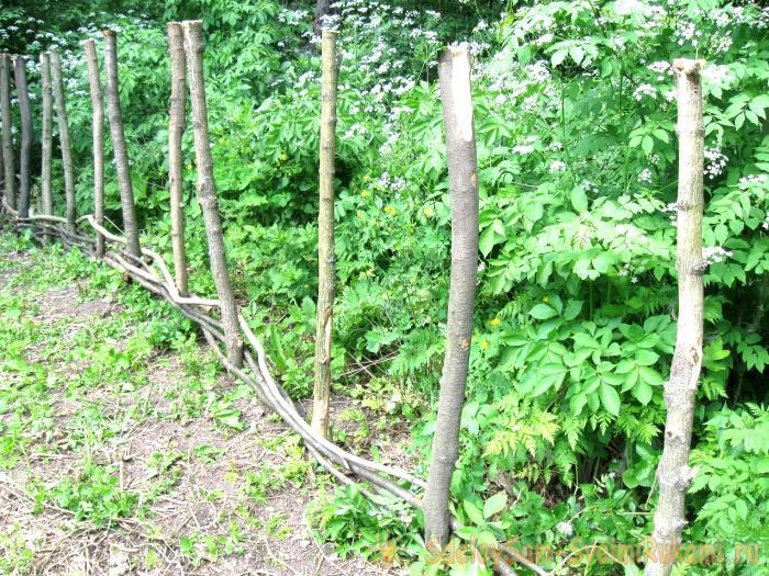 Making wicker fence