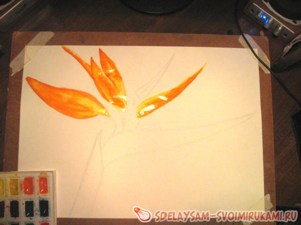основной цвет оранжевый
