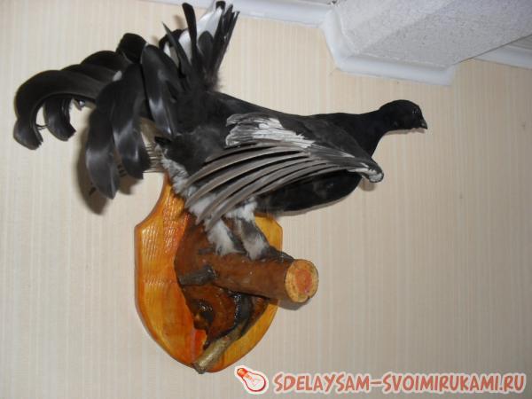 чучело птицы