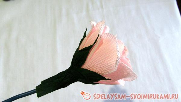 Обмотайте чашелистиком розу