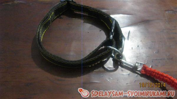 Collar For dog
