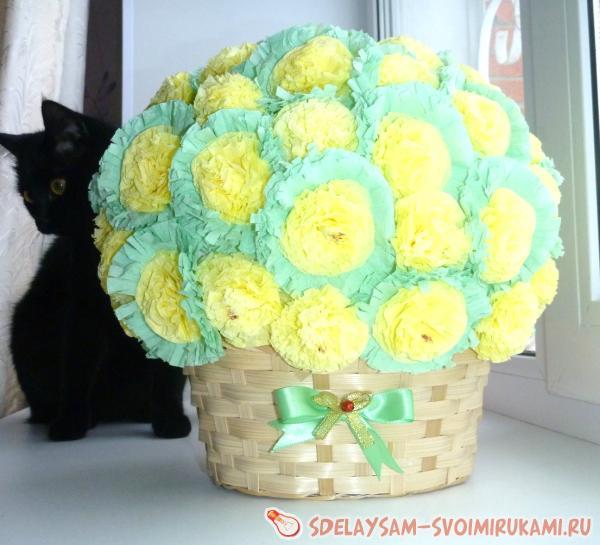 Квартирные цветы фото и названия