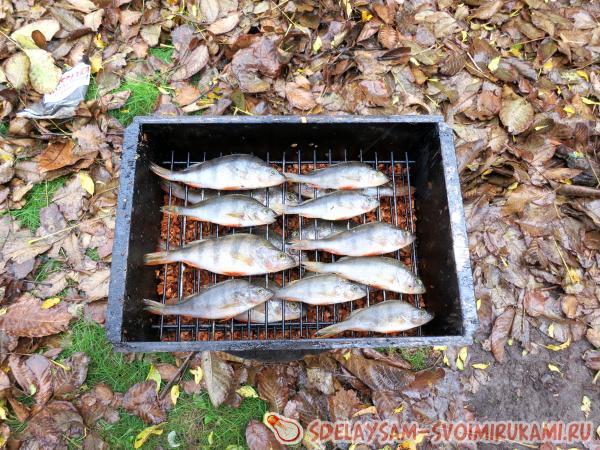 Put the fish