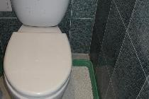 Недорогой и удобный способ наполнения кошачьего туалета