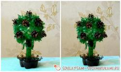 Topiary from plastic bottles with their own hands
