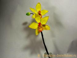 Мастер-класс веточки орхидеи