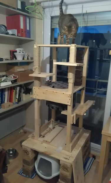 Very tall and durable cat house