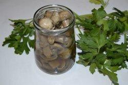 Marinated champignons
