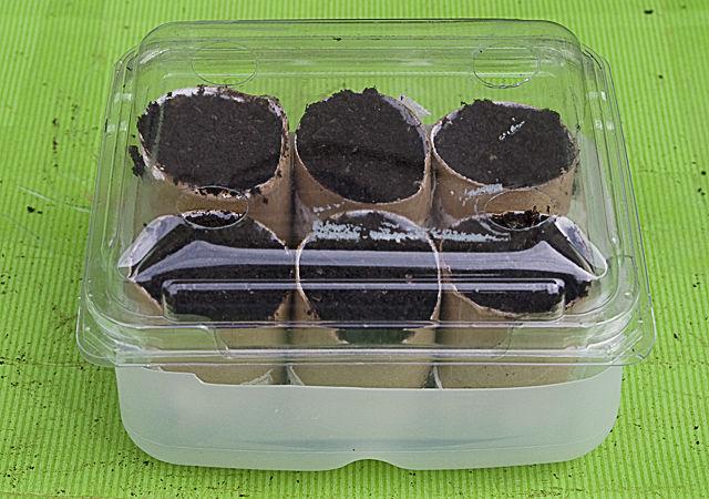 Mini greenhouse for seedlings