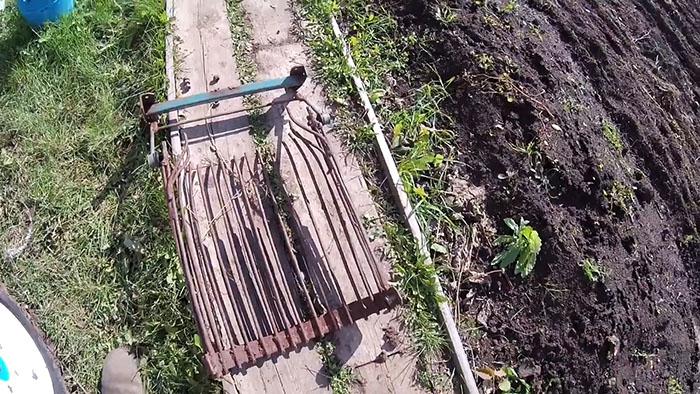 Уборка картошки мотоблоком. Как усовершенствовать картофелекопалку