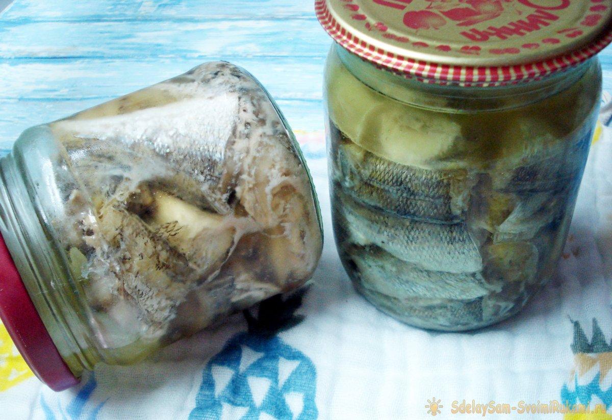 Рыба в автоклаве: рецепты приготовления рыбных консервов в домашних условиях в масле и томате