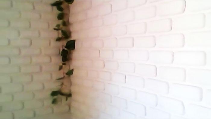Бесплатный декор и утепление стен