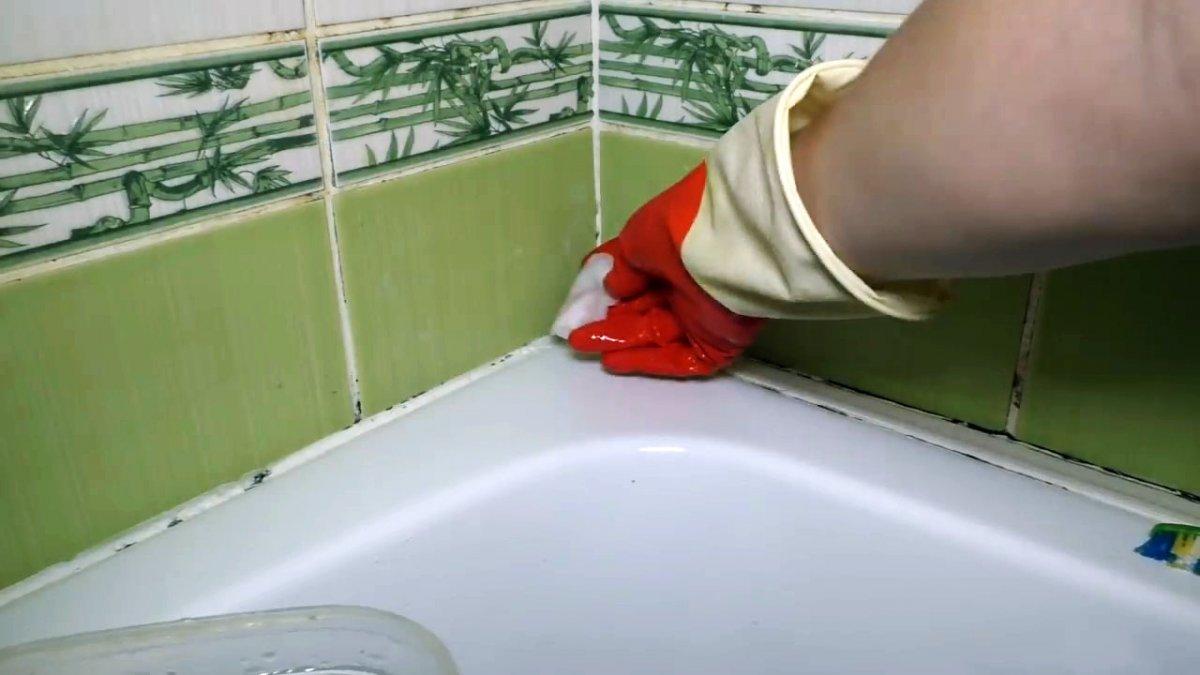 Как навсегда удалить плесень, грибок и почистить швы между плиткой