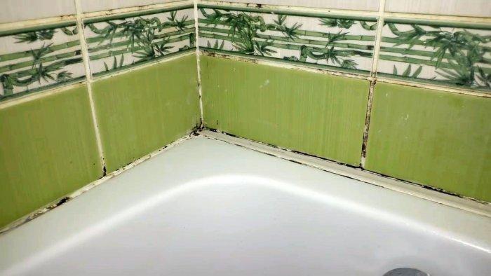 Как навсегда удалить плесень грибок и почистить швы между плиткой