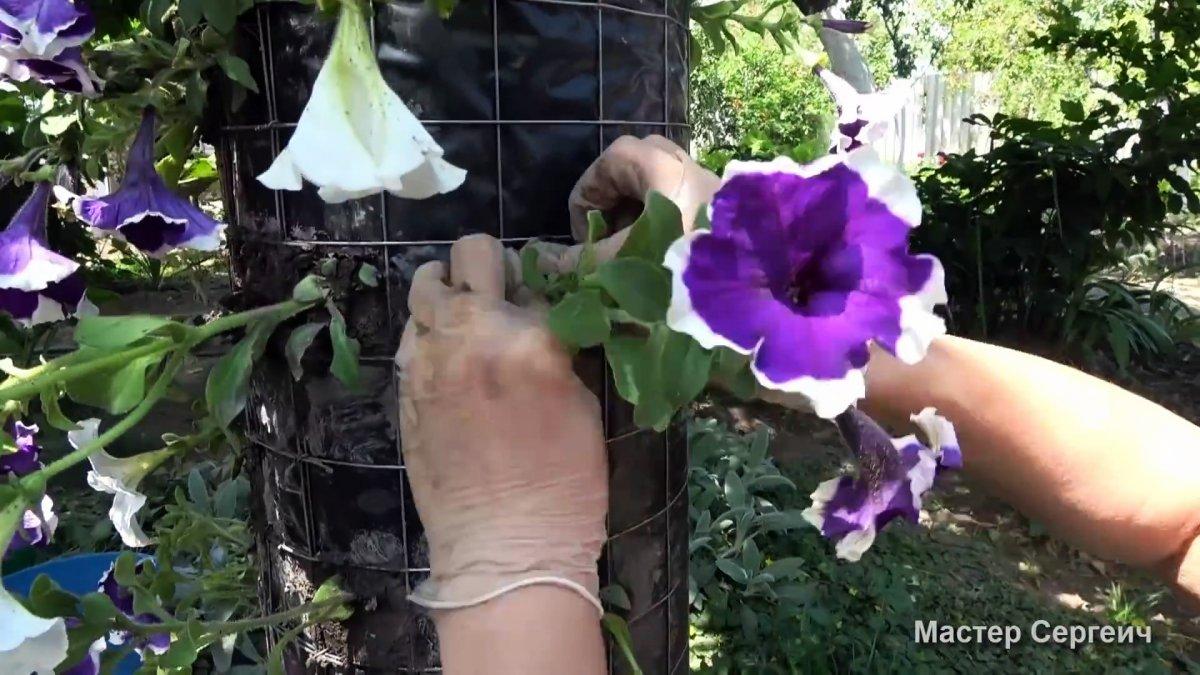 Как сделать вертикальную клумбу