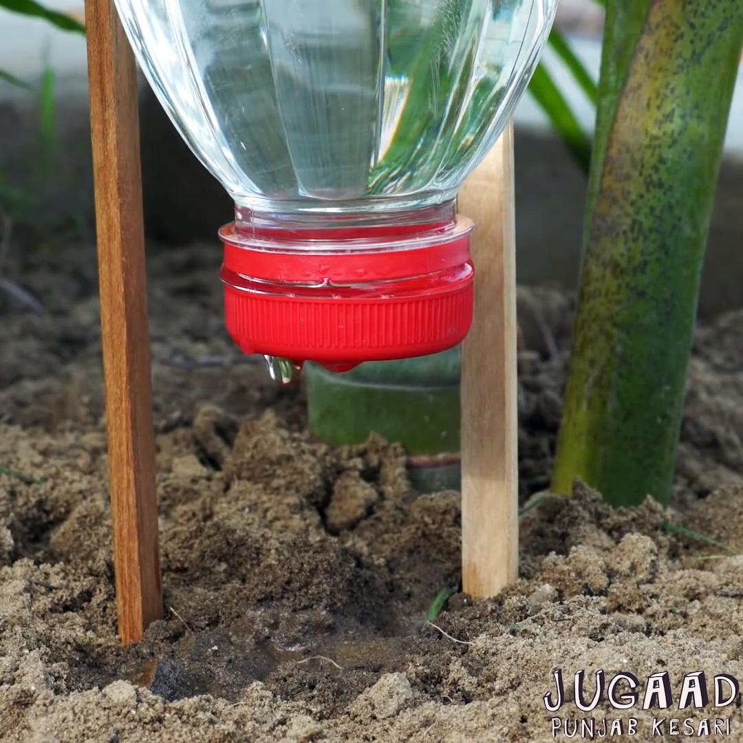 3 способа организовать систему полива растений в период вашего отсутствия