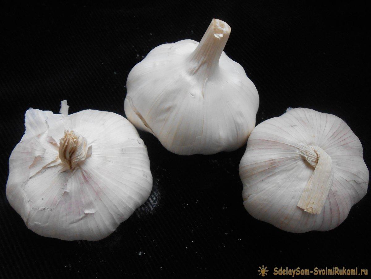 Три подкормки чеснока для большого урожая