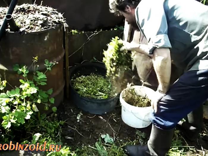 Как применить автомобильные покрышки в огороде с огромной пользой