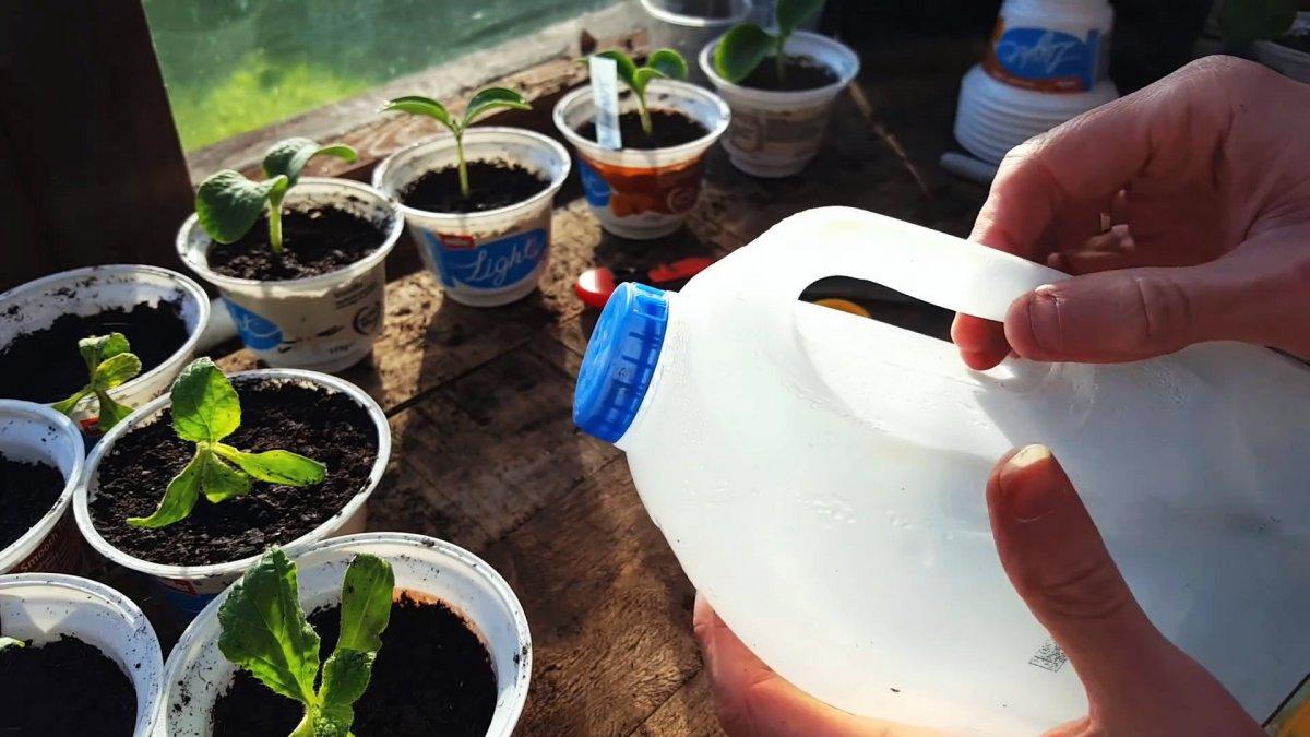 6 вариантов бесплатного садового инвентаря из молочных бутылок