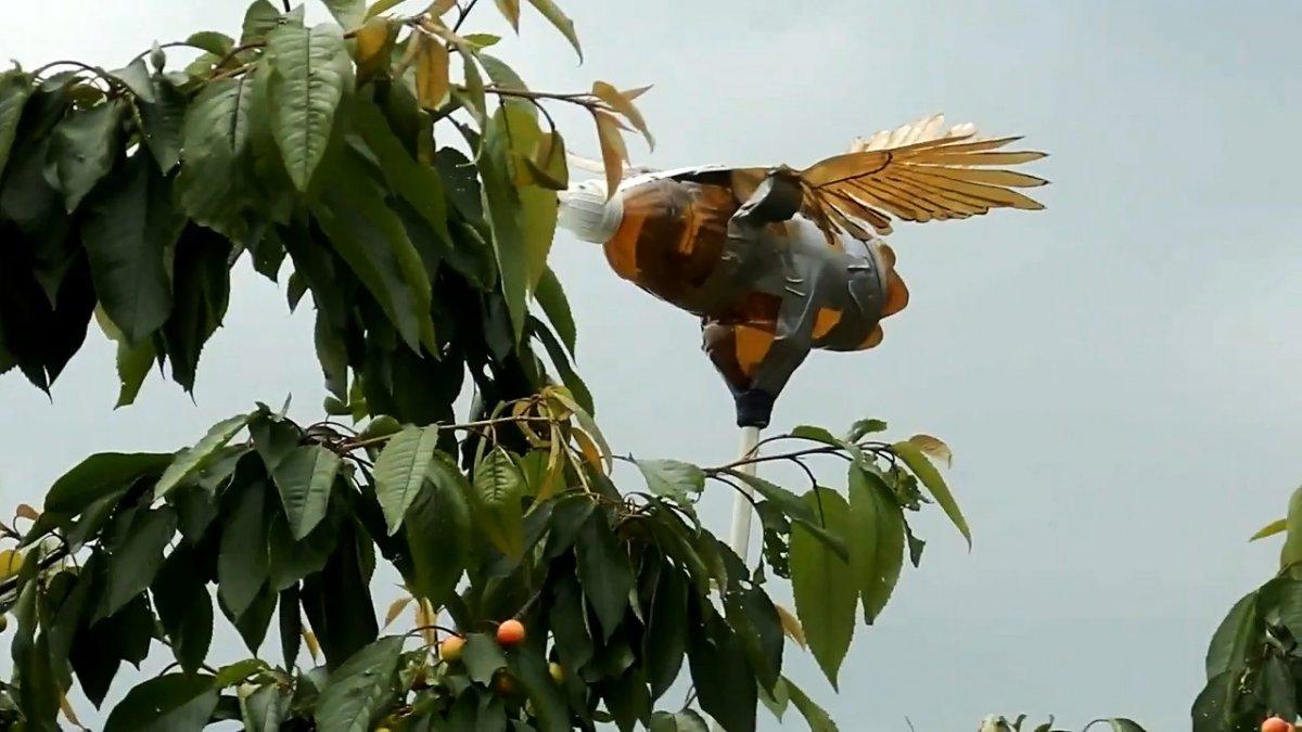 С таким чучелом из ПЭТ бутылки птицы не подлетят к вашему участку на километр