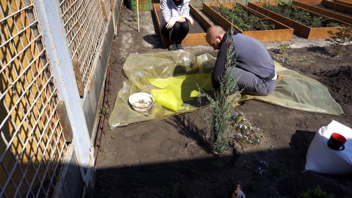 Как дешево за пару дней построить садовый пруд