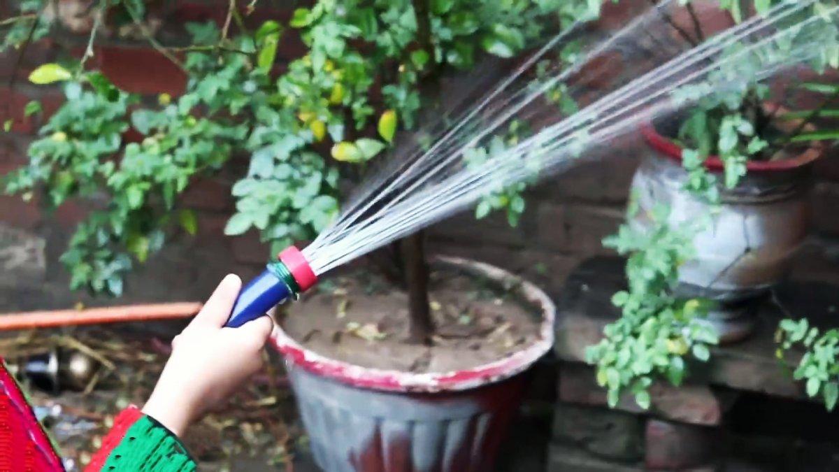 Как сделать бесплатный разбрызгиватель на садовый шланг