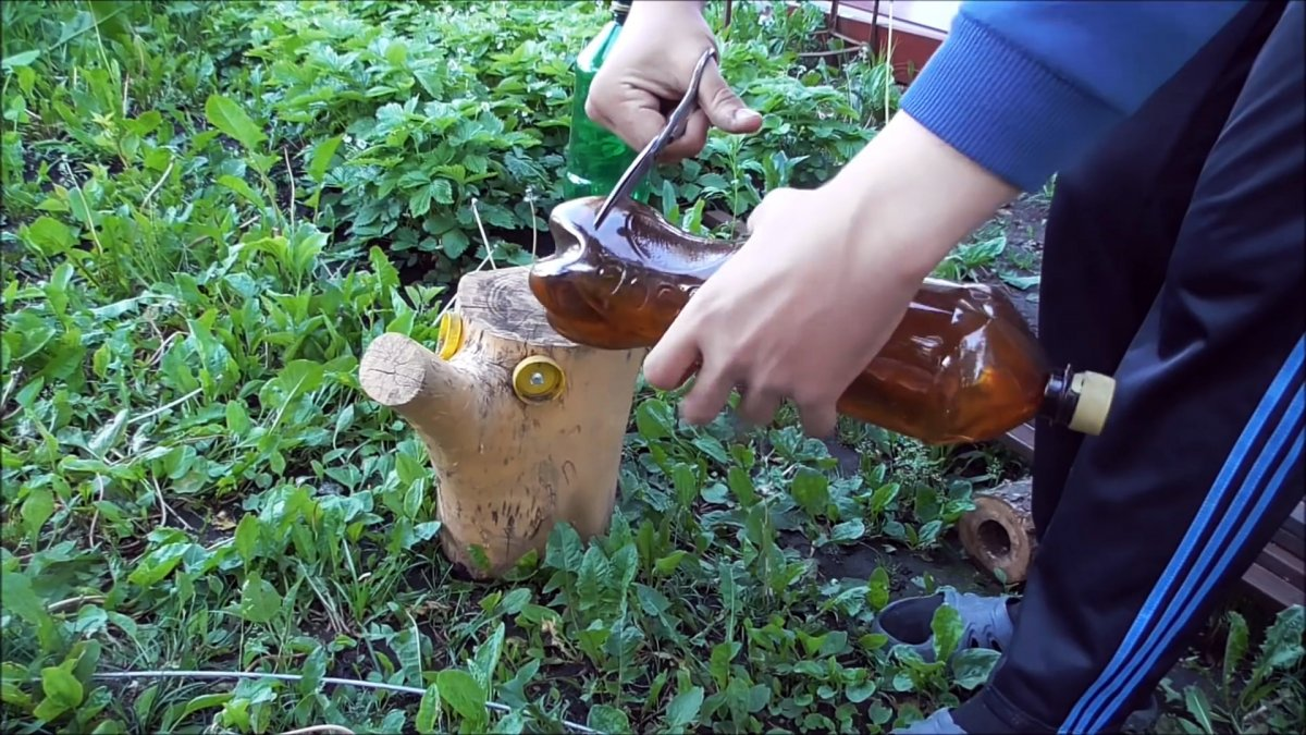 Как из ПЭТ бутылок сделать красивую пальму для сада