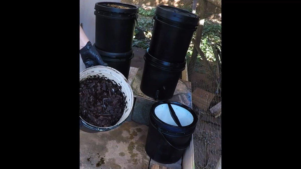 Растения растут прямо на глазах от этого удобрения из отходов