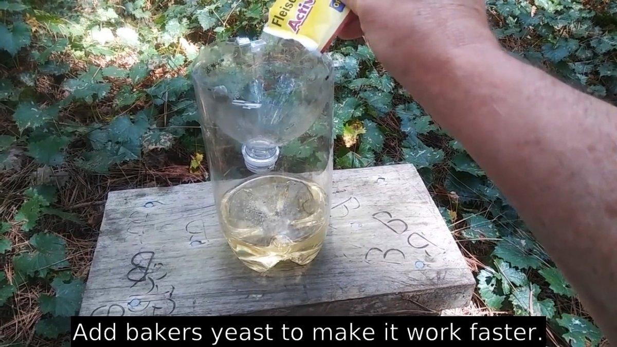 Прощайте осы. Как сделать ловушку из бутылки и забыть про ядовитых насекомых