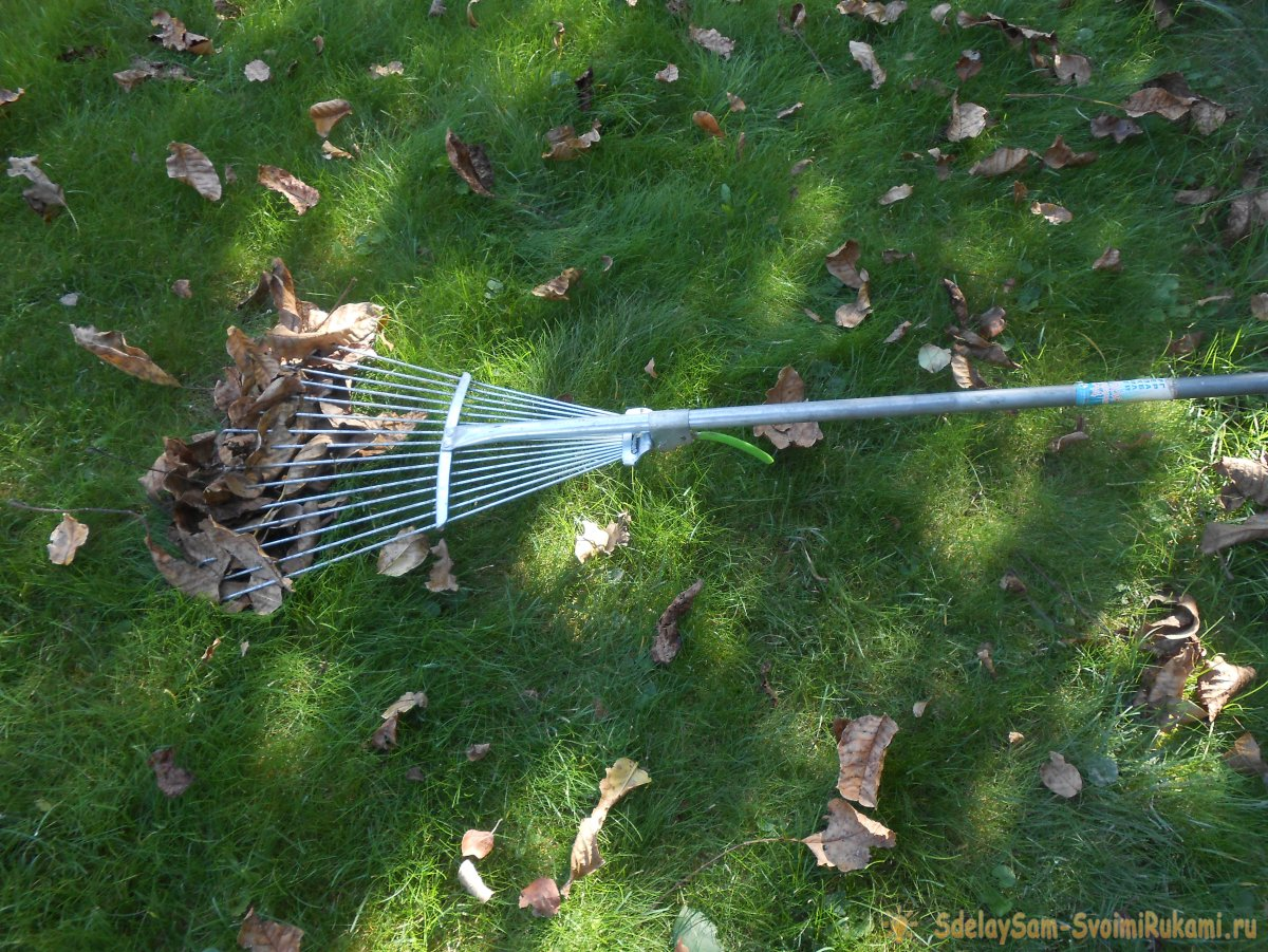 Ваш газон будет как в кино, если делать правильный уход: стрижка, подкормка, аэрация