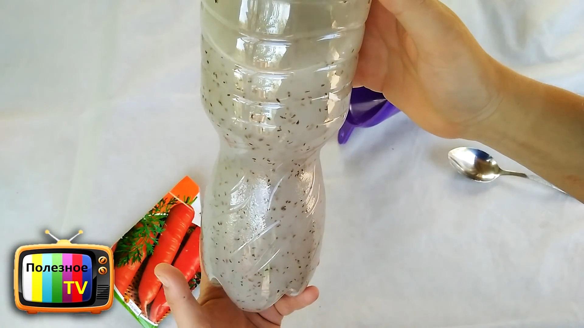Лайфхак огороднику: быстрая посадка моркови без прореживания