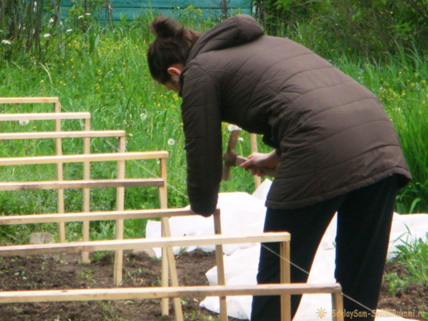 Лайфхак: как быстро построить простой парник на даче своими руками