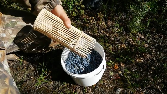 Как сделать комбайн для сбора ягод