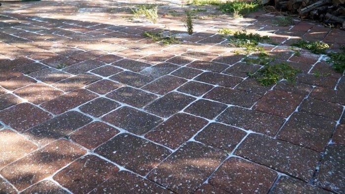 Как дешево экологично и без напряга избавиться от сорняков между тротуарной плиткой