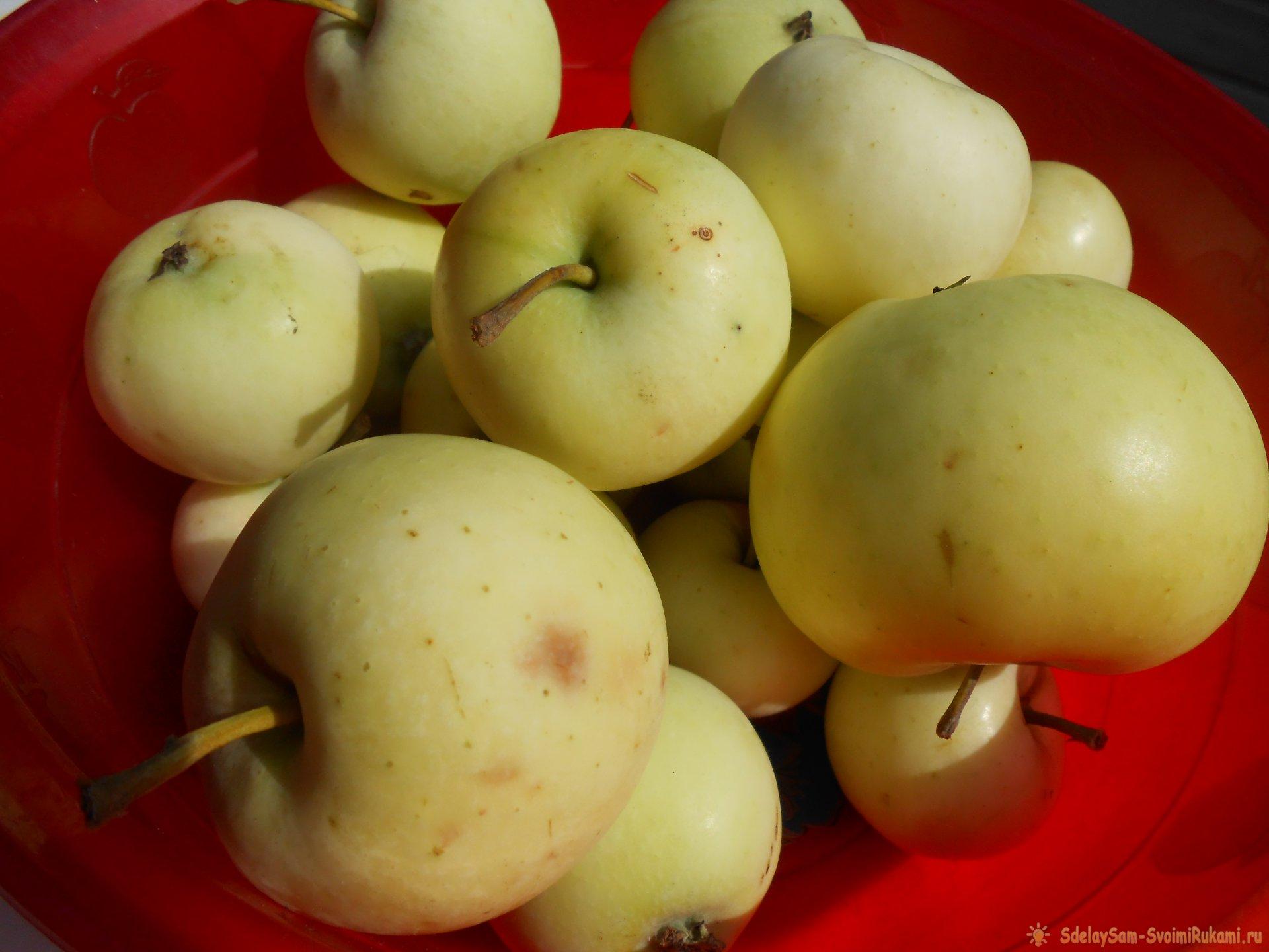 Использование падалицы из яблок для изготовления компоста и обустройства теплых грядок