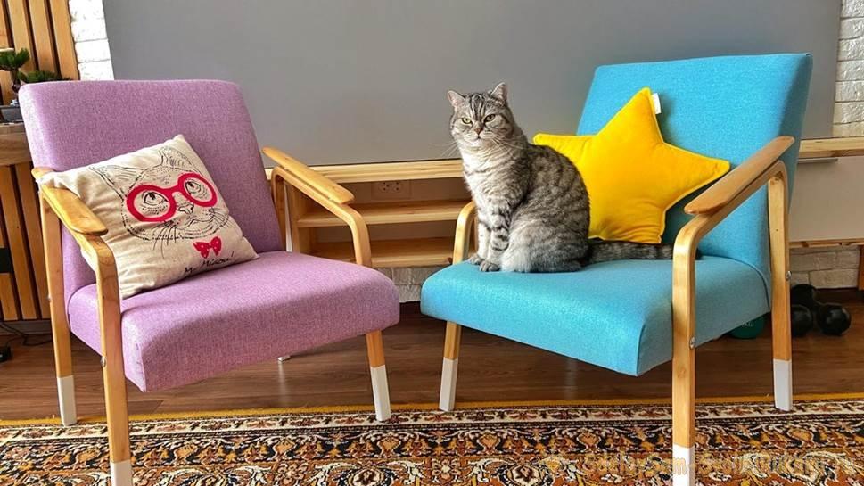 Как отреставрировать старые кресла СССР и получить дизайнерскую мебель почти бесплатно