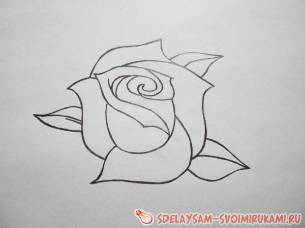 Рисунок не сложный роза