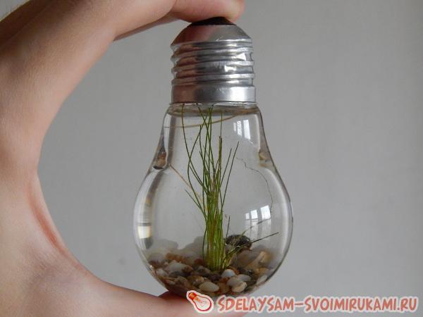 Аквариум из лампы своими руками
