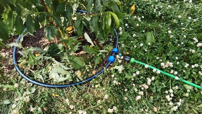 Как сделать автоматический полив дождевой водой без наосов и электричества